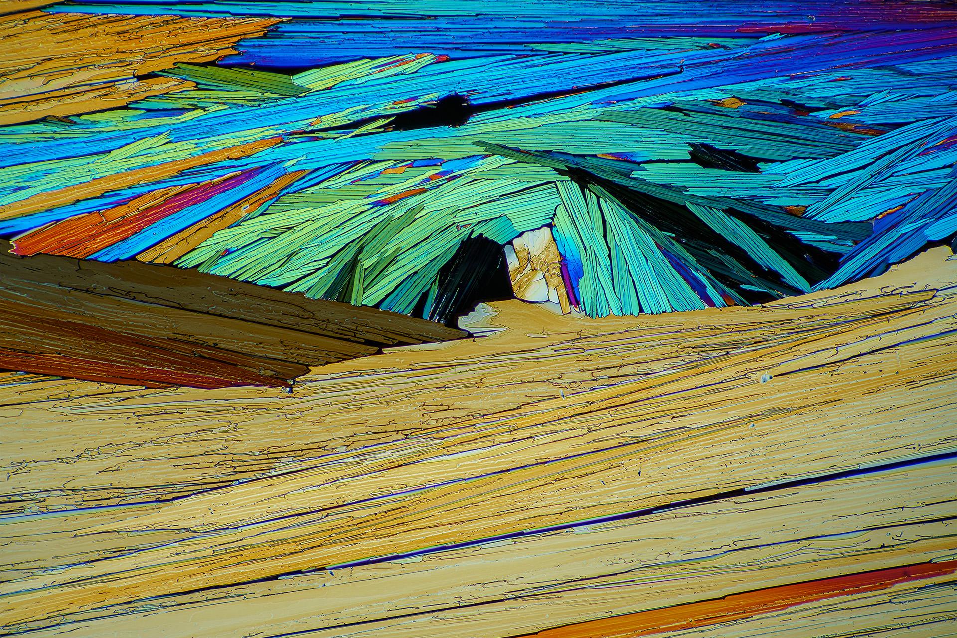 Bernsteinsäure in einer Vergrößerung von 120:1, Mikro Kristall im polarisierten Licht.