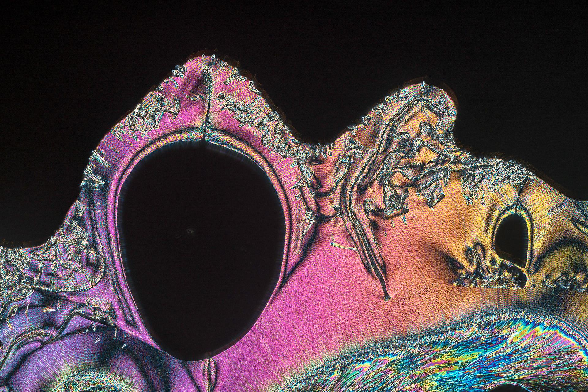 Vitamin C in einer Vergrößerung von 250:1, Mikro Kristall im polarisierten Licht.