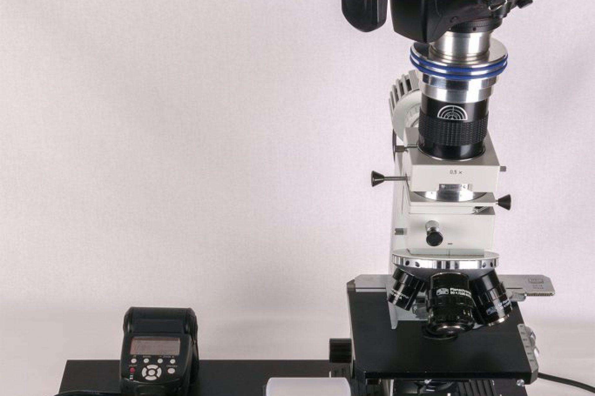 Das Arbeitssetup, ausgestattet mit einem JENALB-Pol und einer Sonderanfertigung der MF-Fotoanpassung APO für die digitale Mikrofotografie von BW-Optik.