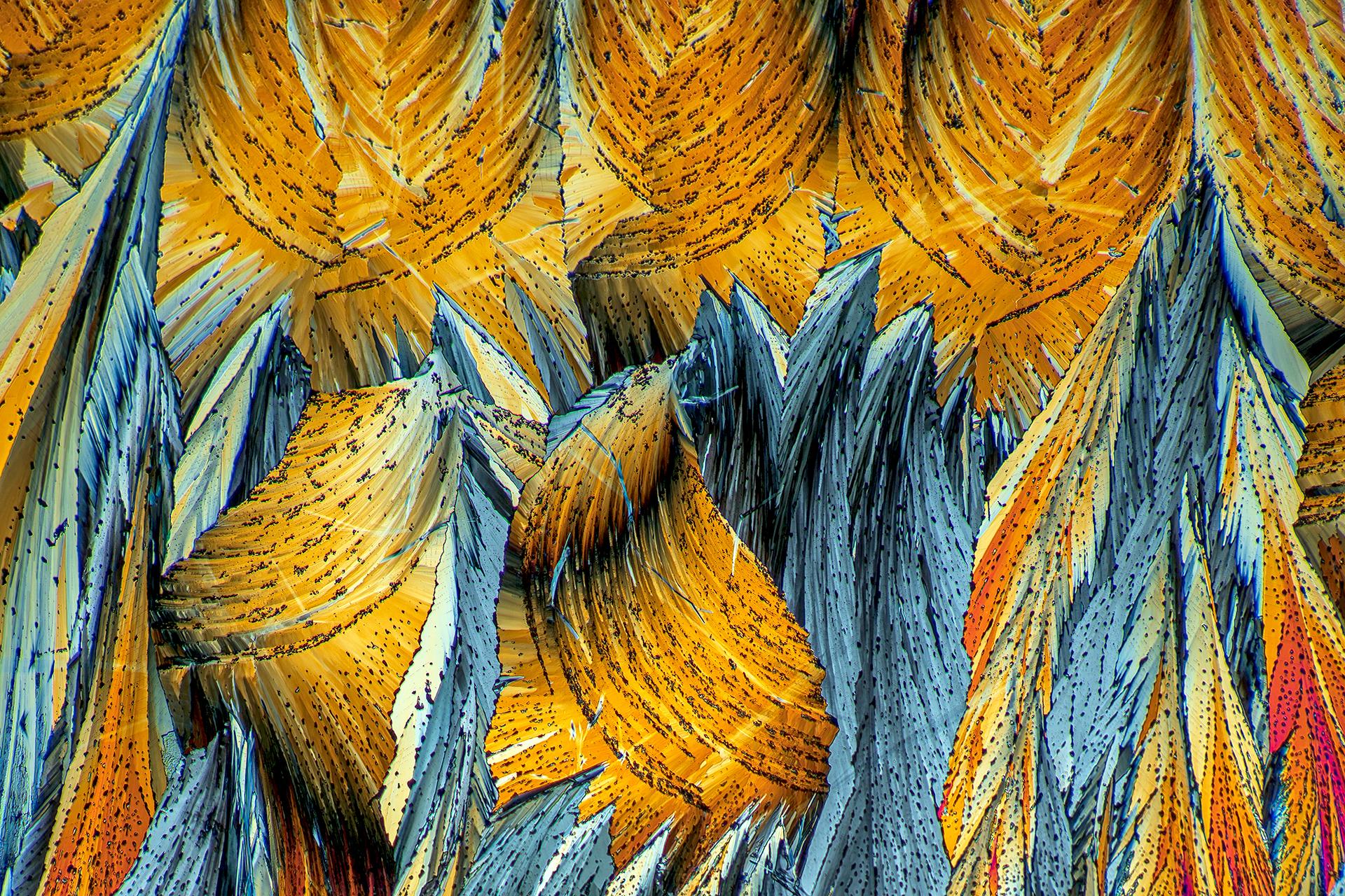 Hippursäure in einer Vergrößerung von 250:1, Mikro Kristall im polarisierten Licht.