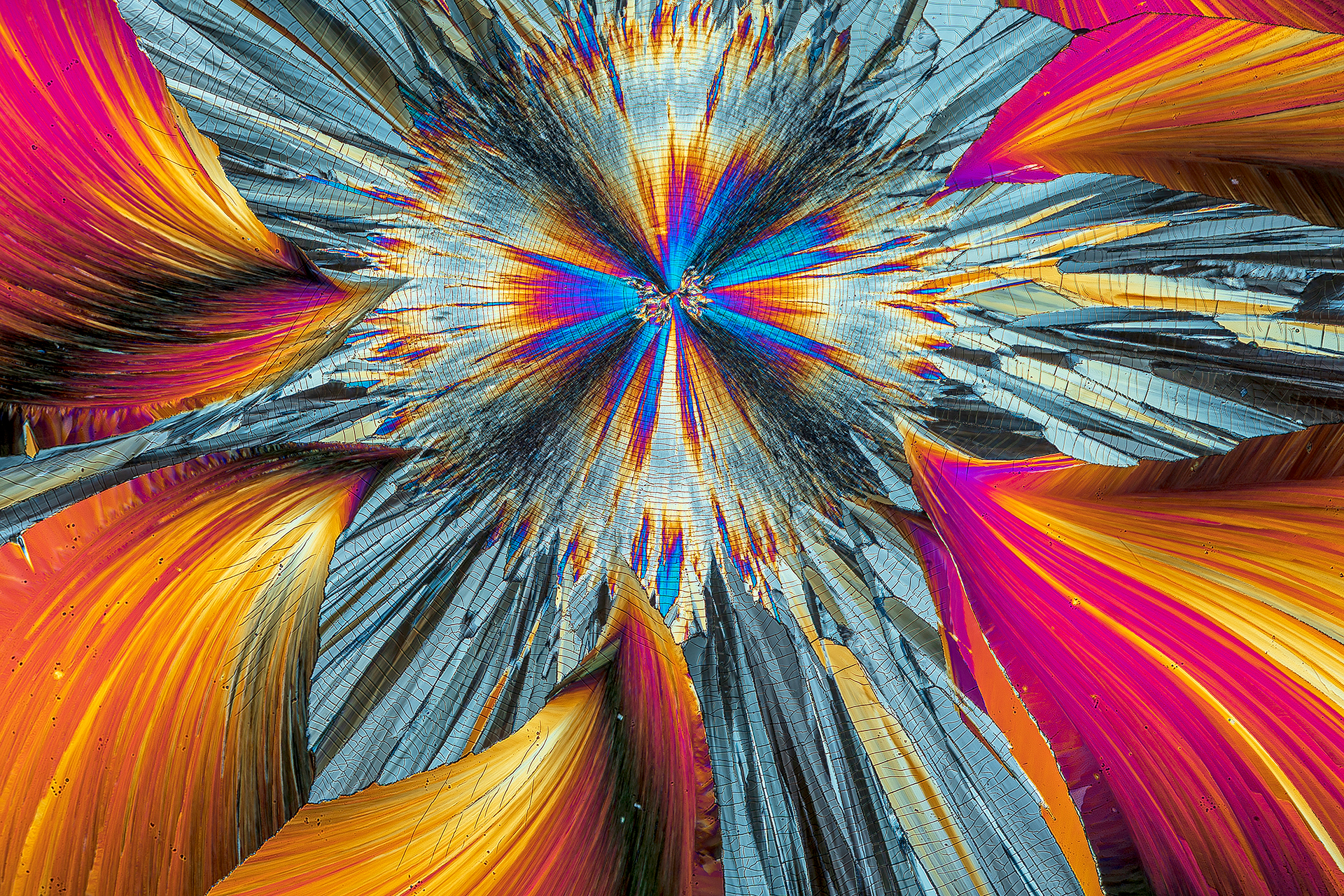 Hippursäure in einer Vergrößerung von 120:1, Mikro Kristall im polarisierten Licht.